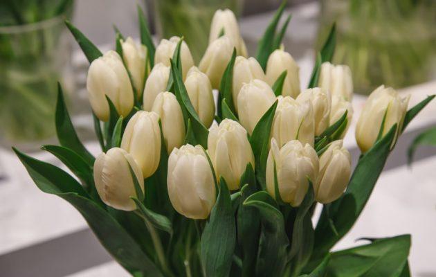 Miedzynarodowy Handel Kwiatami Cietymi