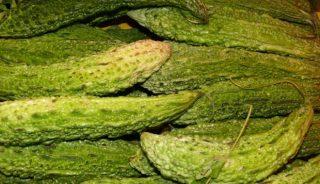 przepękla ogórkowata, mało znane warzywo dyniowate