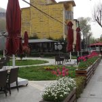 Stambul_kwiecien 2016_podczas Istanbul Tulip Festival_tulipany w ogrodku restauracyjnym