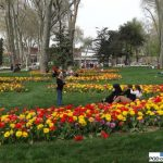 park Gülhane_Stambul_Istanbul Tulip Festival 2016