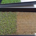 Naturalne, biodegradowalne podkłady do wysiewów wykonane z włokiem konopi to jeden z produktów firmy Grow-tech
