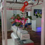 System uprawy prezentowany na stoisku firmy Ammerlaan