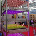 Light4Food - system produkcji roślin z wykorzystaniem lamp LED, prezentowany przez firmę Ammerlaan