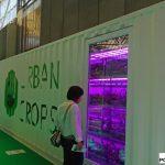 Kontener uprawowy zaprezentowała firma Urban Crops