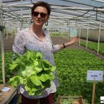 Informacji o odmianach sałaty udzielała Małgorzata Zadura z firmy Hazera