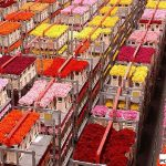 Royal FloraHolland_Aalsmeer