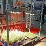 Lampy LED prezentowano na stoisku firmy Royal Brinkman
