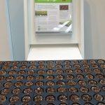 Pierwszy raz podczas wystawy ZtŻ ofertę koreczków Greenplugs zaprezentowała firma Green Produts