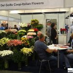 delgolfo-coop_wlochy_FlowerExpo Poland Warszawa 2016