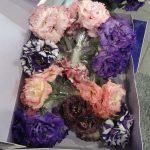 """Mono Lisi"""" - pęczki eustom w pudełku, chętnie wykorzystywane przez zagranicznych florystów - z oferty gospodarstwa Montana Lisianthus _FlowerExpo Poland_Warszawa 2016"""