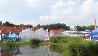 Gołuchów 2016