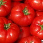 pomidor Beef Bang F1