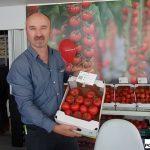 pomidor Prodezo RZ F1