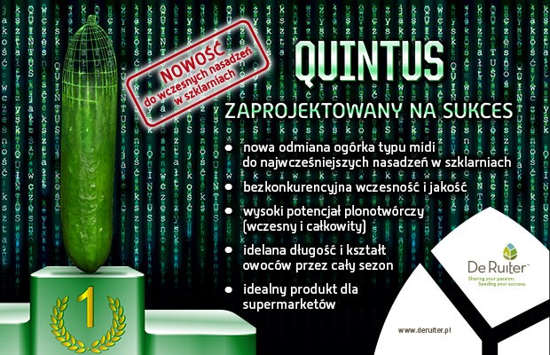 dr_banner_quintus_v02a_620x400px