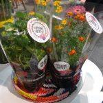 Bloom-Bites_FloraHolland Trade Fair Aalsmeer 2016