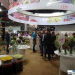 Premium Flowers - jedna z grup producentów holenderskich, które zaprezentowały się w Aalsmeer