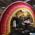 Firma Van der Wilt Gerbera_FloraHolland Trade Fair Aalsmeer 2016