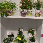 bloom-bites_vreugdenhil_FloraHolland-Trade-Fair-Aalsmeer 2016