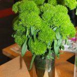 Goździk 'Green Wicky'_FloraHolland-Trade-Fair-Aalsmeer-2016