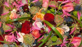 Royal FloraHolland Trade Fair Aalsmeer 2016