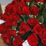 Rosa_Red Tower__rosen-tantau_IFTF 2016