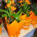 Ornithogalum dubium_Kwiaciarnia Floristica Krakow__AC