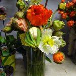 Maki sprowadzone z Włoch_Kwiaciarnia Floristica Krakow_8 marca_AC