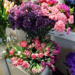 Goździki z Ameryki Płd i tulipany z Polski_Kwiaciarnia Floristica Krakow_8 marca_AC