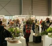 Ekspozycja prac konkursowych - bukietów i kompozycji kwiatowych była jedną z atrakcji targów Gardenia i Special Days