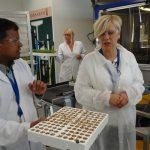 Wizyta w laboratorium De Ruiter, w którym ocenia się parametry nasion, z prawej Anna Wojciechowska - De Ruiter (AW)