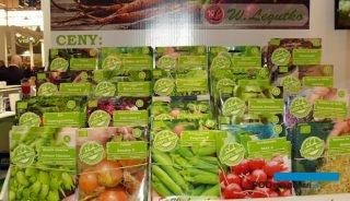Nasiona Bio do produkcji kiełków