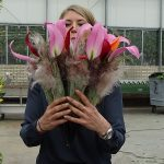 Sara-Lisa-Ludvigsson_bukiet slubny wlasny styl_Dutch-Lily-Days-2017_
