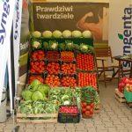 Ekspozycja warzyw na stoisku firmy Syngenta
