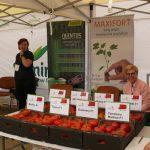 Na stoisku De Ruiter i Seminisu promowano odmiany pomidorów i ogórków