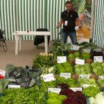 Asortyment warzyw z firmy Bejo Zaden