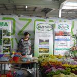Firma Amma oferowała etykiety i tabliczki do oznaczania roślin ozdobnych