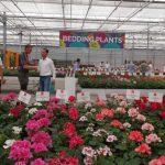 Flower Trials 2017 w firmie Dummen Orange (w Holandii)