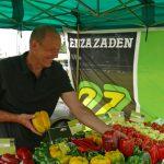 Na stoisku firmy Enza Zaden informacji na temat odmian udzielał Bernard Zioło