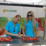 Na stoisku firmy HM.Clause częstowano pomidorami wielkoowocowymi i malinowymi