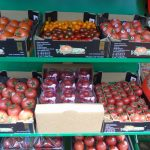Ekspozycja różnych pomidorów z grupy VegaPol