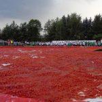 Sceneria na chwilę przed Wielką Bitwą Pomidorową