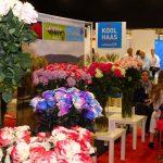 Migawka z tegorocznych targów FEP, na których dominowały kwiaty z importu