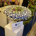 kompozycja-Roman-Steinhauer_Flower-Expo-Poland 2017