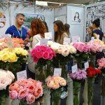 Feja Rozy_FlowersExpo 2017_Moskwa