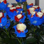 kwiaty w kolorach flagi Federacji Rosyjskiej_FlowersExpo_Moskwa-2017