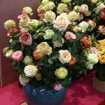 Roses-DecofreshGroup_Royal-FloraHolland_Trade-Fair-Aalsmeer_2017