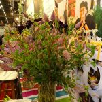 Ptilotus_Royal-FloraHolland_Trade-Fair-Aalsmeer_2017
