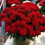 Roza_Red Velvet_RosenTantau_IFTF-2017