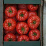 Pomidor malinowy Mei Shuai F1, polecany do uprawy w tunelach