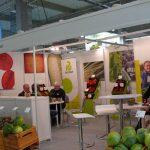 Ofertę odmian warzyw przedstawiła firma Rijk Zwaan, fot. Amelia Wydra